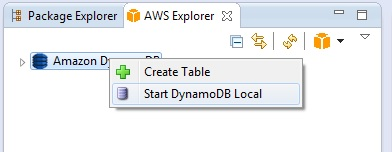Starting DynamoDB Local