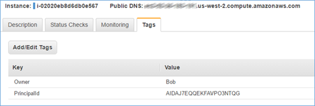 Screenshot showing that the instance has been automatically tagged with the Bob user name and user ID