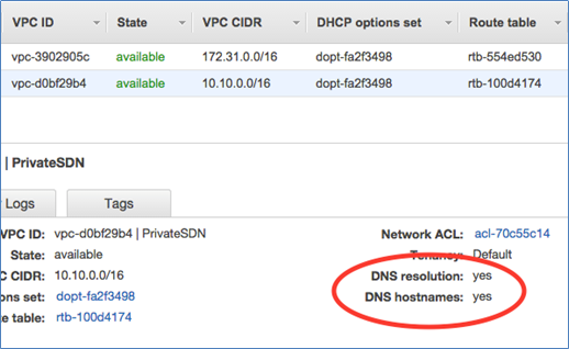 Image of DNS resolution and DNS hostnames enabled