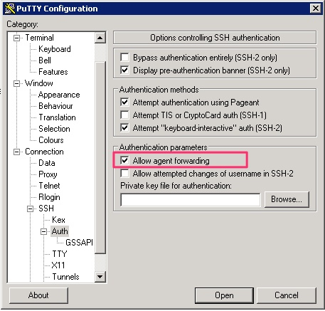 Screenshot of the Pageant PuTTY component providing the SSH key for authentication